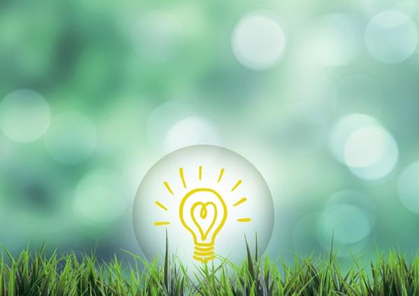 緑と電球のイラスト